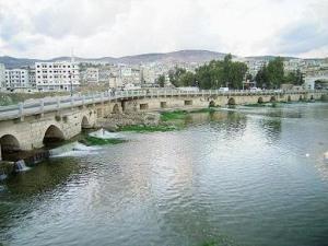 جسر الشغور